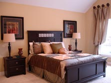 Master Bedroom with Cathedral or Tray Ceiling